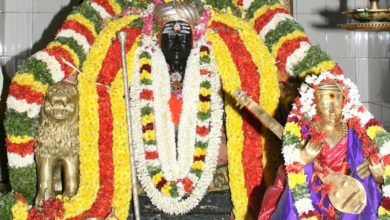 Photo of 167th Thiyagaraja Aradhana Festival of Saint Sri Thiyagaraja at Thiruvaiyaru (2014) Video