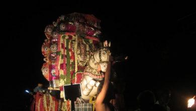 Photo of Day 11 Thiruvaiyaru Chithirai Festival 2014
