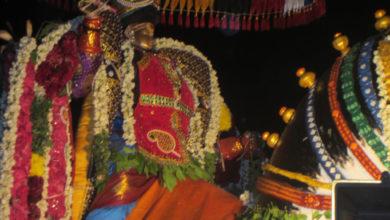 Photo of Day 8 Thiruvaiyaru Chithirai Festival 2014