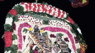 Photo of Day 4 Thiruvaiyaru Chithirai Festival 2014