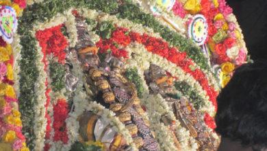 Photo of Day 1 Thiruvaiyaru Chithirai Festival 2014
