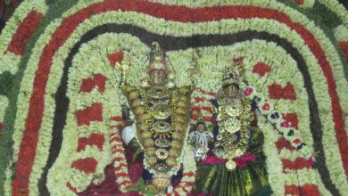 Photo of Day 5 Thiruvaiyaru Chithirai Festival 2014