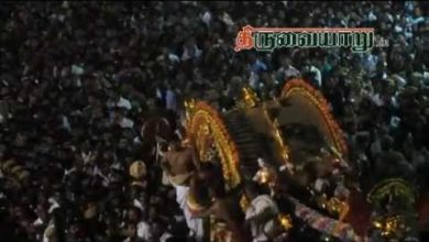 Photo of Thiruvaiyaru Sapthasthanam Chithirai Festival 2013 Day 13 Video