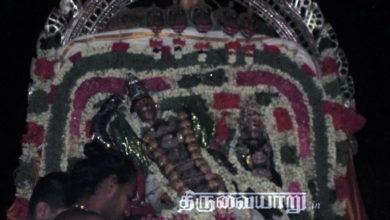 Photo of Day 2 Thiruvaiyaru Chithirai Festival 2015 (Adhishesha Vahanam)
