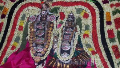 Photo of Day 5 Thiruvaiyaru Chithirai Festival 2015