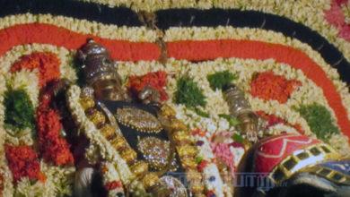 Photo of Day 6 Thiruvaiyaru Chithirai Festival 2015 (Yaanai Vahanam & Anna Vahanam)