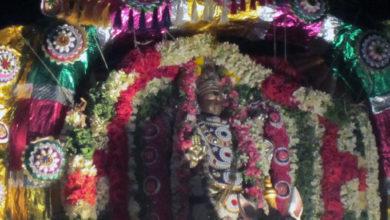 Photo of Day 11 Thiruvaiyaru Chithirai Festival 2015 (Kuthirai Vahanam)