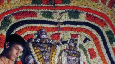 Photo of Day 10 Thiruvaiyaru Chithirai Festival 2015 (Dwajavarohanam)