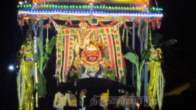Photo of Day 3 Thiruvaiyaru Chithirai Festival 2015 (Boodha Vahanam)