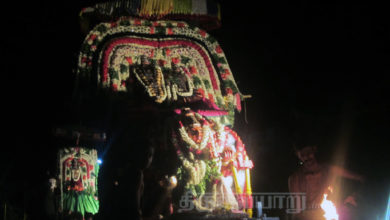 Photo of Day 4 Thiruvaiyaru Chithirai Festival 2015 (Kailasa Vahanam & Kamadhenu Vahanam)