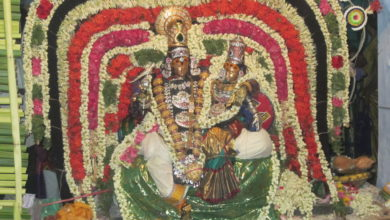 Photo of Day 7 Thiruvaiyaru Chithirai Festival 2015 (Koratham)