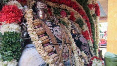 Photo of Day 13 Thiruvaiyaru Sapthasthanam Chithirai Festival 2015