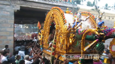 Photo of Thiruvaiyaru Sapthasthanam Chithirai Festival 2015 (Day 12) Video