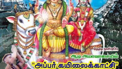 Photo of Thiruvaiyaru Aiyarappar Temple Aadi Ammavasai – Appar Kailai Kaatchi Live 2015
