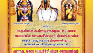 Photo of Thirupampuram Arulmigu Vanduserkuzhali sametha Arulmigu Seshapureeswarar Temple Raghu – Kedhu Transit 2016