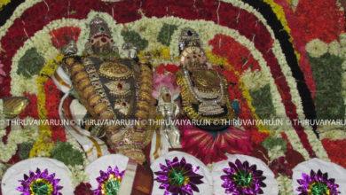 Photo of Thiruvaiyaru Sapthasthanam Chithirai Festival 2016  – Day 5 Video