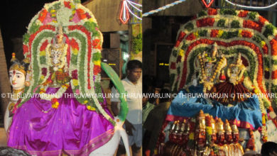 Photo of Day 4 Thiruvaiyaru Chithirai Festival 2016 (Kailasa Vahanam & Kamadhenu Vahanam)