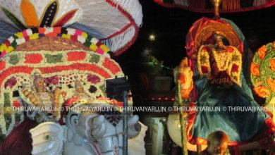 Photo of Day 6 Thiruvaiyaru Chithirai Festival 2016 (Yaanai Vahanam & Anna Vahanam)