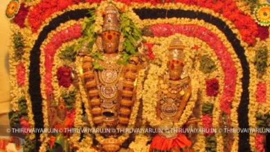 Photo of Day 7 Thiruvaiyaru Chithirai Festival 2016 – Koratham Video
