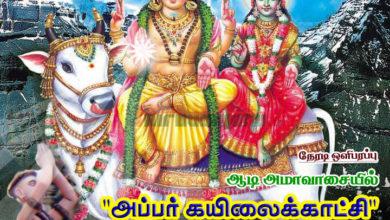 Photo of Thiruvaiyaru Aiyarappar Temple Aadi Amavasai – Appar Kailai Kaatchi Live 2016