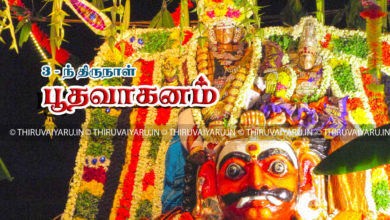 Photo of Day 3 Thiruvaiyaru Chithirai Festival 2017 (Bootha Vahanam) Video & Photos