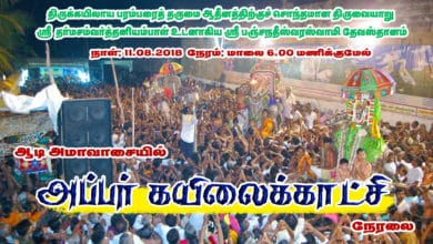 Photo of Thiruvaiyaru Aiyarappar Temple Aadi Amavasai – Appar Kailai Kaatchi 2018