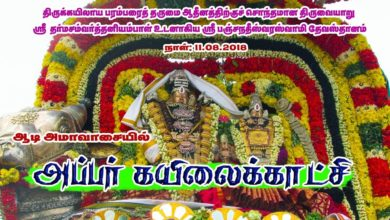 Photo of Thiruvaiyaru Aiyarappar Temple Aadi Amavaasai – Appar Kailai Kaatchi Live 2018