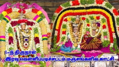 Photo of Thiruvaiyaru Sapthasthanam Chithirai Festival 2019 – Day 1 Night FullHD