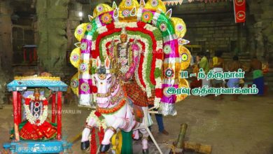 Photo of Thiruvaiyaru Sapthasthanam Chithirai Festival 2019 – Day 11 Kuthirai Vahanam FullHD