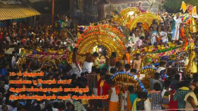 Photo of Thiruvaiyaru Chithirai Festival 2019 – Day 13 Bommai Poo Podum Kaatchi