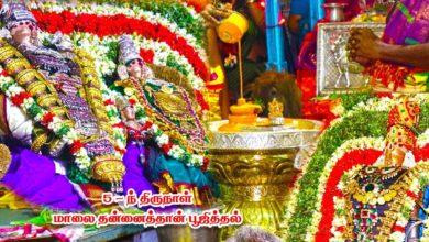 Photo of Thiruvaiyaru Sapthasthanam Chithirai Festival 2019 – Day 5 Thannaithaan Poojithal FullHD