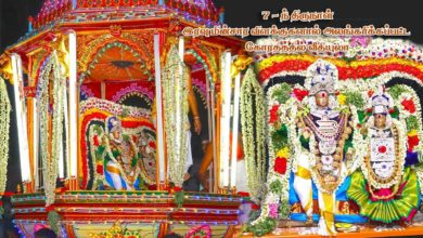 Photo of Thiruvaiyaru Sapthasthanam Chithirai Festival 2019 – Day 7 Koratham lighted with Electrical Lamps