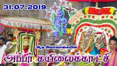 Photo of Thiruvaiyaru Aiyarappar Temple Aadi Amavaasai – Appar Kailai Kaatchi 2019