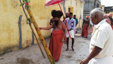 Photo of Pandhakal Muhurtham happened on the account of Guru Poojai of  Dharmapuram Adheenam's Guru Mahasannidhanam