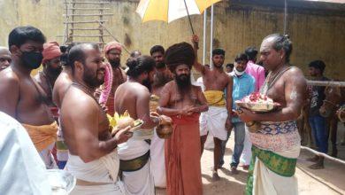 Photo of Cow Pooja held on Monthly Guru Pooja of Dharmapuram Adheenam 26th Gurumanigal -30.05.2020