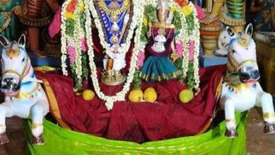 Photo of Vaikasi Vasantha Urchavam – 8th Day